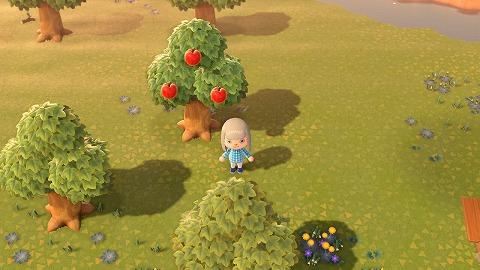 あつ森りんご