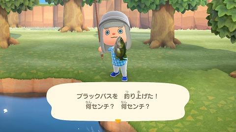 あつまれどうぶつの森釣った魚