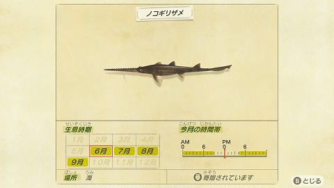 あつまれどうぶつの森ノコギリザメ