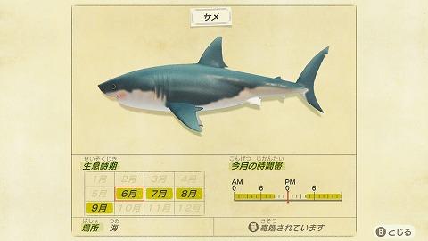 あつまれどうぶつの森サメ