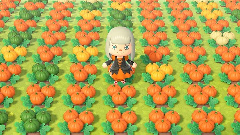 あつ森かぼちゃ